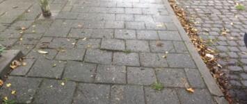 Robijnstraat: verhelpen wortelopdruk - 170-18_2