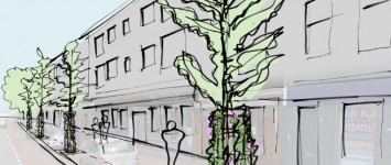 Vergroening Hertogstraat - groen1