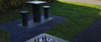 Schaaktafel(s) - schaaktafel