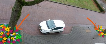 adopteren boomspiegels voor ingang appartementencomplex Oscar Carréstraat - IMAG0255_LI