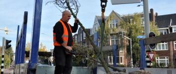 NIEUWE ACTIE: Bomen met de buren - bmb