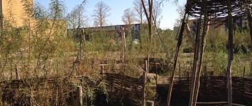 Natuurspeeltuin in het park van de Grote Boel - B1XZoWVCUAE-8hy
