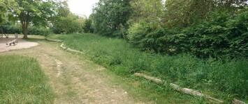 Bloemenzee in speelpark Groenewoud - DSC_0733